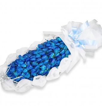 푸른장미_2c322